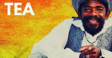 Cocoa Tea Songs Mixtape - Best Of Cocoa Tea DJ Mix